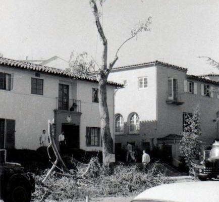1958-theta-xi-trimming-front-tree